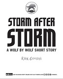Storm After Storm Book Cover