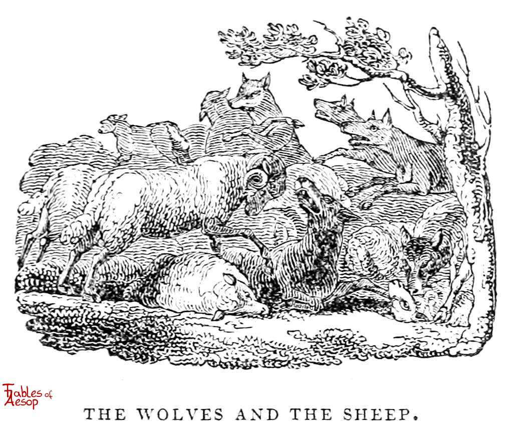 The Wolves And Sheep