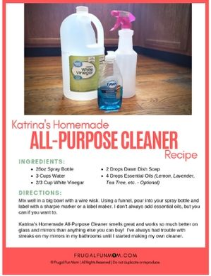 Homemade All-Purpose Cleaner | Frugal Fun Mom