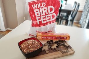 Bird Feeder Supplies | Frugal Fun Mom