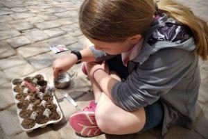 Grow Seeds With Kids | Frugal Fun Mom
