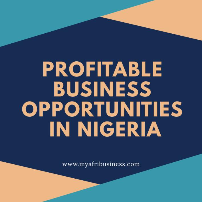 Profitable lucrative business in Nigeria