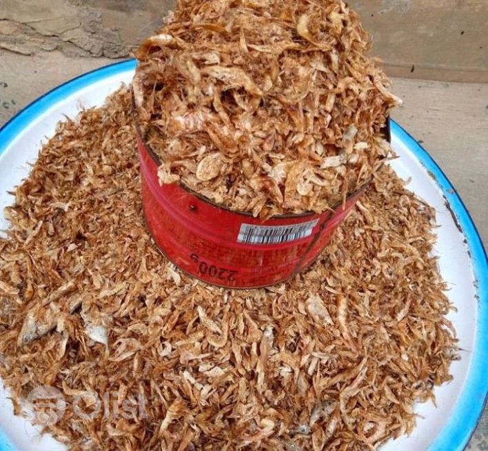 This is How to start crayfish business with N30,000 and become financially independent. But before i go into details lets see the potential benefits of crayfish below