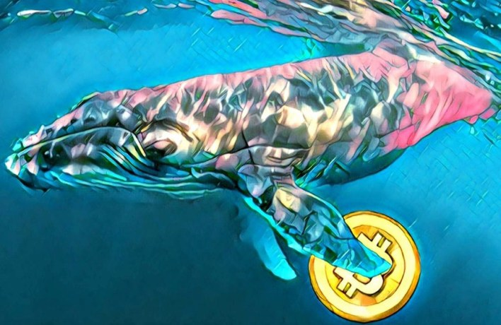 Unknown whale transfers $160 million worth of Bitcoin