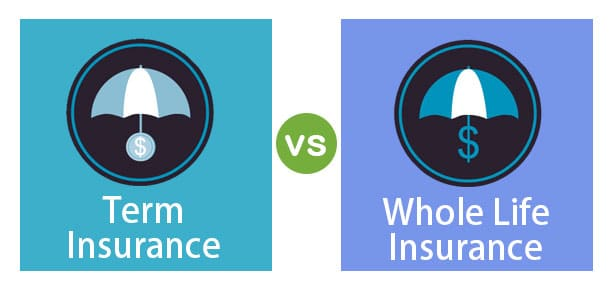 Term Life vs. Whole Life Insurance