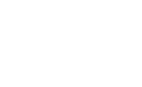 The Goodman