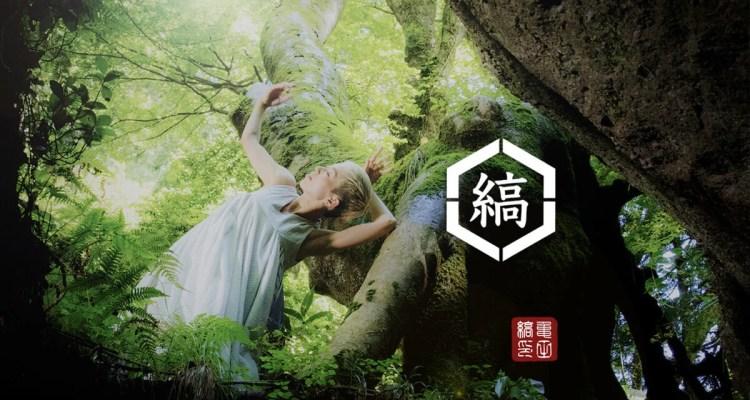 亀田縞:江戸時代から続く縞柄の伝統生地