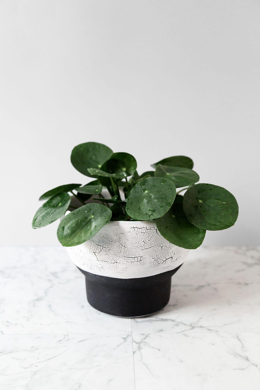 DIY Maceta craquelada raku · DIY Crackle raku planter · Fábrica de Imaginación · Tutorial in Spanish