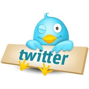 Twitter : des utilisateurs cultivés, aisés et prescripteurs.