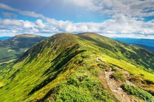 Mountain path in Carpathians, Ukraine