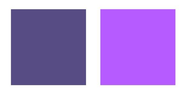 Cool or warm purple?