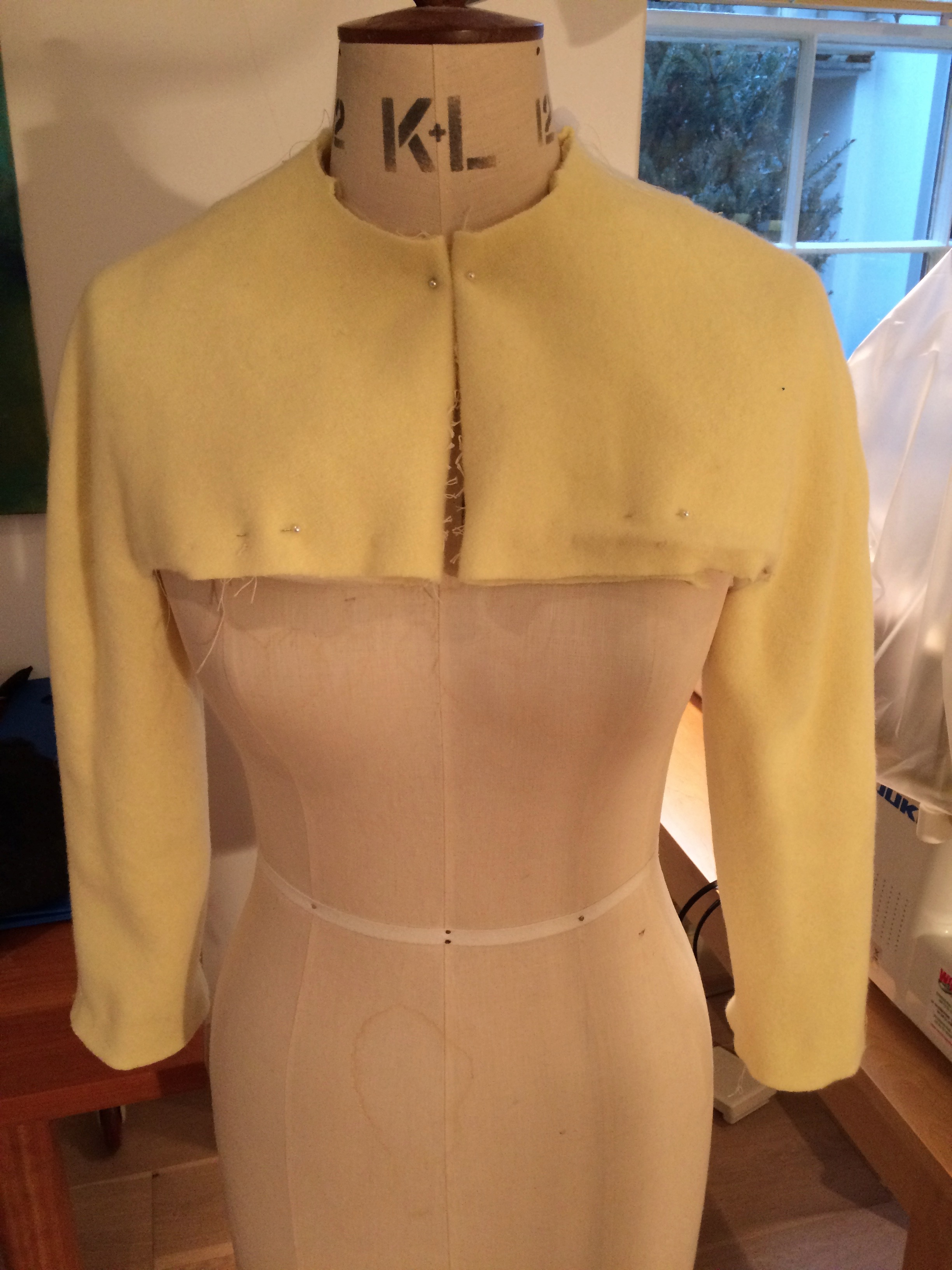 Sleeve and front bodice