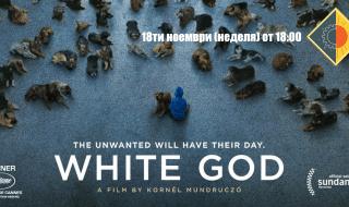 Белият бог