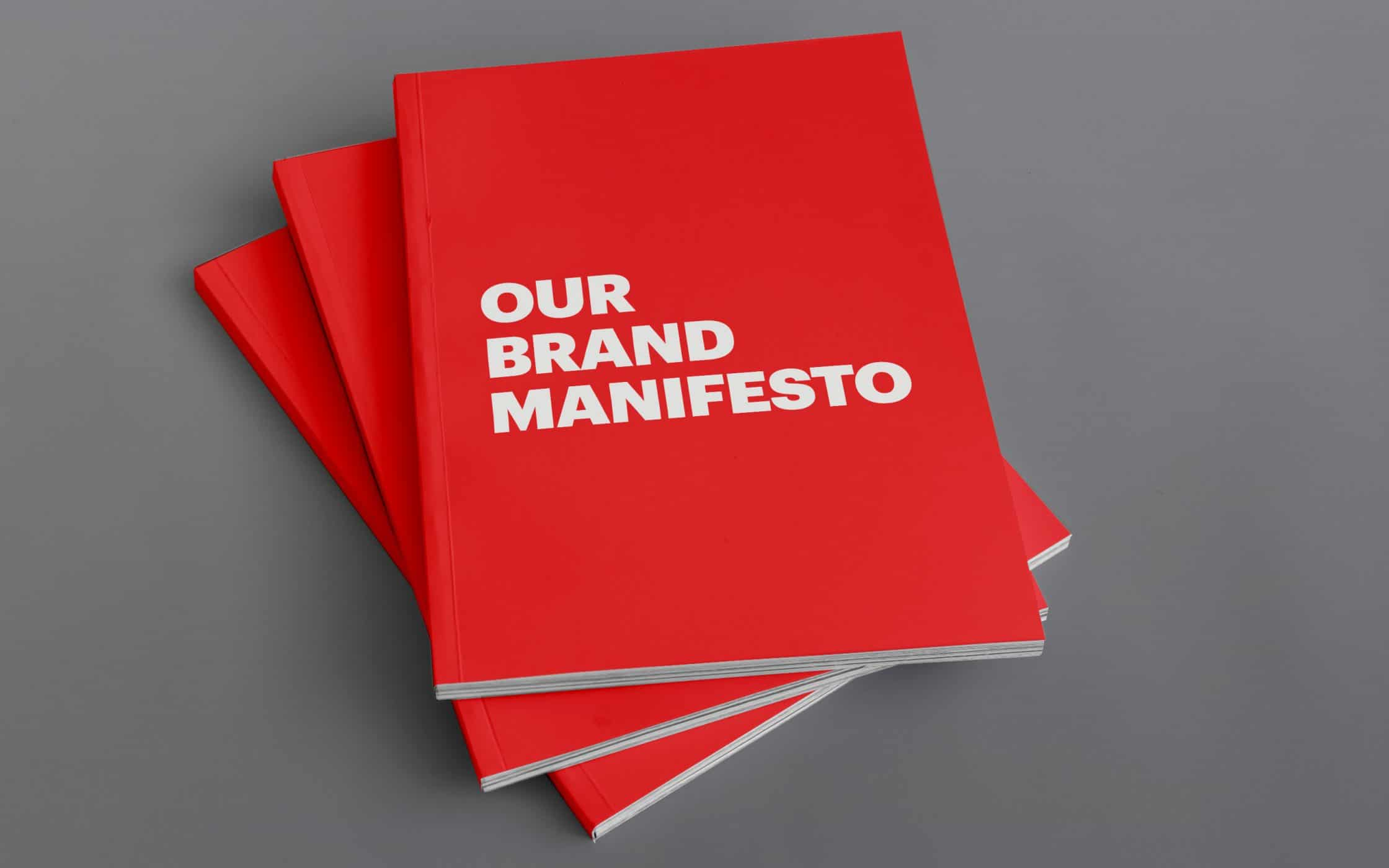 Image result for brand manifesto