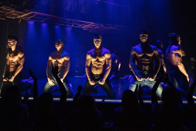 The cast of magic mike live