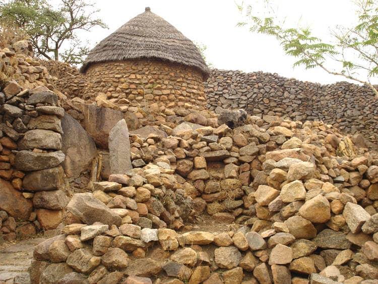 Salma phillips honoured as unesco world heritage volunteer ambassador (2)