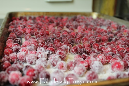 candied cranberries covered in sugar