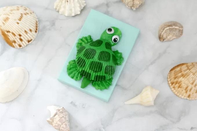 Seashell turtle