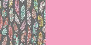 Bohemian Feathers and LightPink