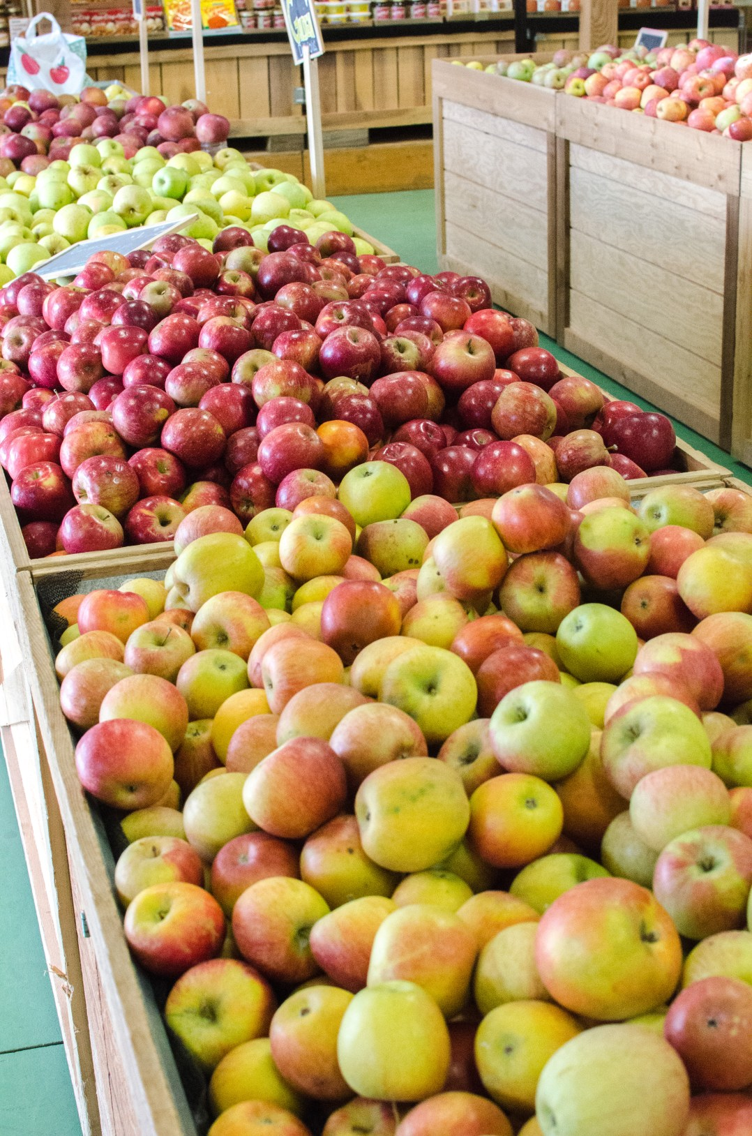 It's almost like fall exploded all over my blog, since everything I've been sharing you with y'all relates to fall in some way. What could be more fall like than going to an orchard to pick your own apples?!? That's exactly what my husband and I did a few weekends ago! Eckert's Boyd Orchard invited me to come check it out, and I was so excited, because I always had planned on going, but just never have! Eckert's Boyd Orchard is located in Versailles, Kentucky off of Pinckard Pike. The drive from Lexington to Eckert's Boyd Orchard takes you through some of the most gorgeous horse farms that you'll ever see. It's hard to believe scenery like that is located just minutes away from Lexington.