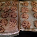 Lactation Cookie Baking Experiment