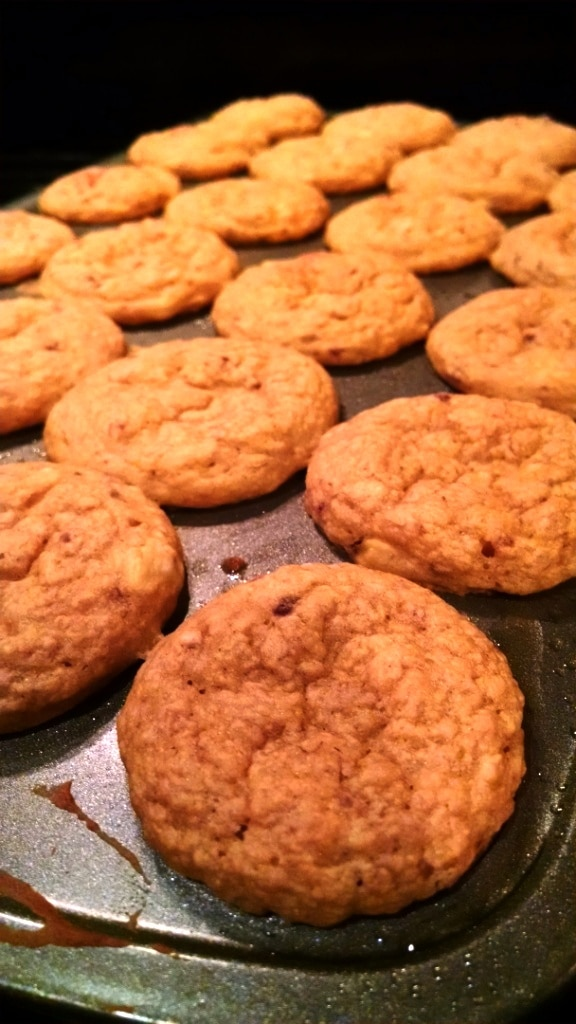 Mini muffins in pan