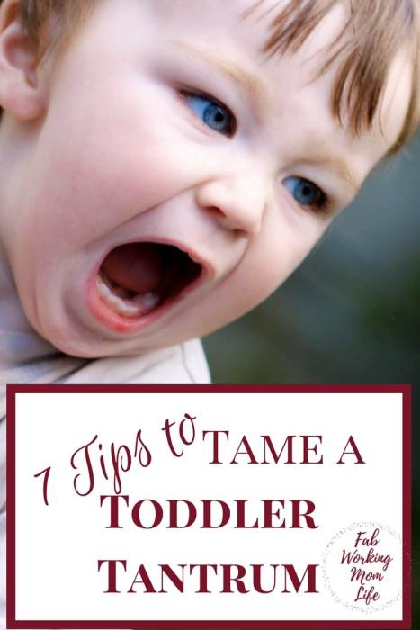 If you're struggling with toddler tantrums from your 2 year old, try these 7 Tips To Tame a Toddler Tantrum