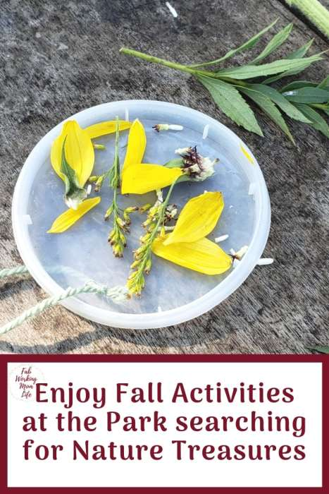 Enjoy Fall Activities at the Park searching for Nature Treasures | Fab Working Mom Life