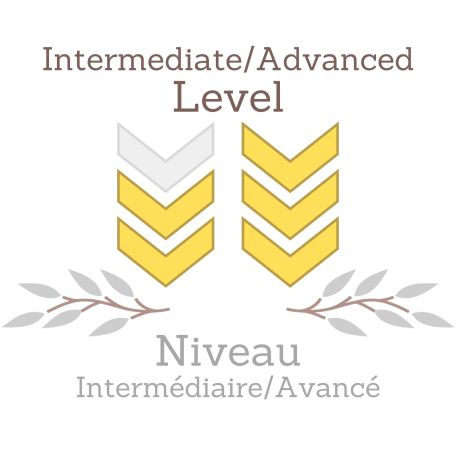 Intermediate Advanced pattern Level L2-3