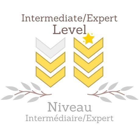 Intermediate Expert Level