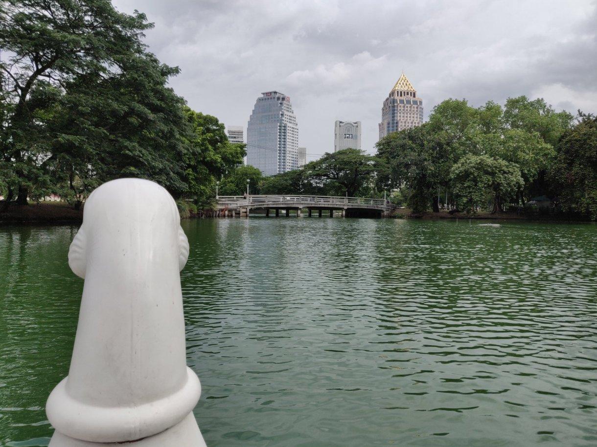 Parco Lumphini, parchi da vedere thailandia, parchi thailandia, sport thailandia, laghetto thailandia, re thailandia, correre thailandia