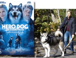 فيلم Hero Dog: The Journey Home 2021 مترجم HD اون لاين