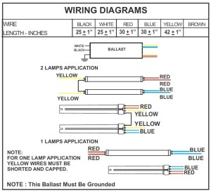 2 Lamp T12 Ballast Wiring Diagram Collection | Wiring