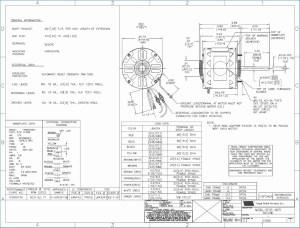 Century 1 2 Hp Motor Wiring Diagram Sample | Wiring