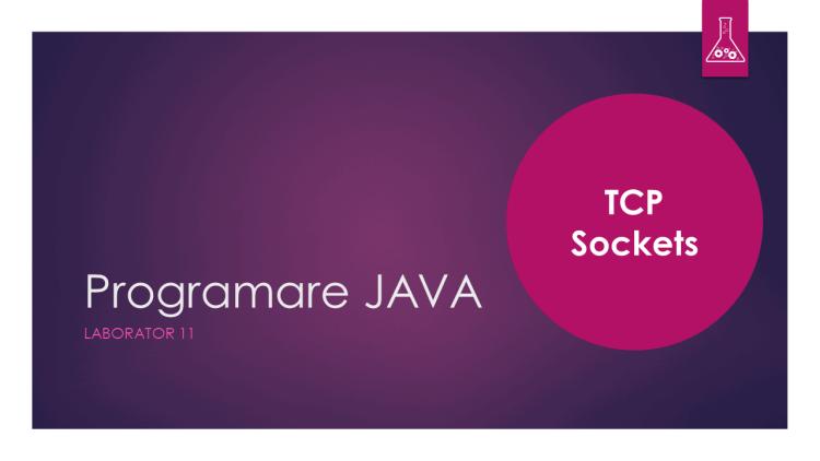 Programare Java - Laborator 11