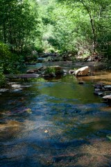 Green Upstream