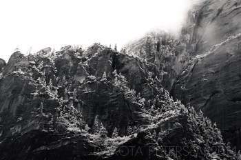 Frozen Ridge Mono