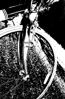 Front Bike Wheel and Fork