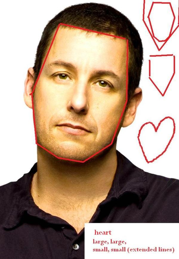 Adam Sandler & Julie Bowen=Julia Stiles | face shapes 101