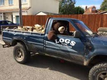 Teddy in log truck