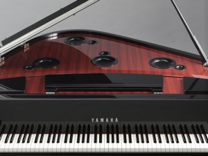 Tunes Launches Two Yamaha Partnered Showrooms