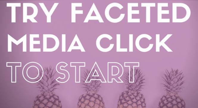 faceted media, marketing agency, socially conscious, marketing, social media, websites, wordpress