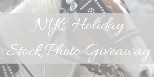 stock photo giveaway, faceted media