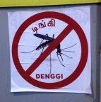 Goodbye dengue. Glad we never met.