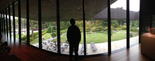 De Young art museum