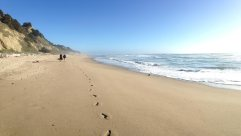 San Gregorio Beach in San Mateo