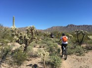 First time mountain biking with Jeff. Bike broke. Called it Broke Bike Mountain.
