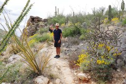 Hiking Redington Canyon