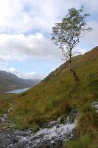 The Glen above Inverie