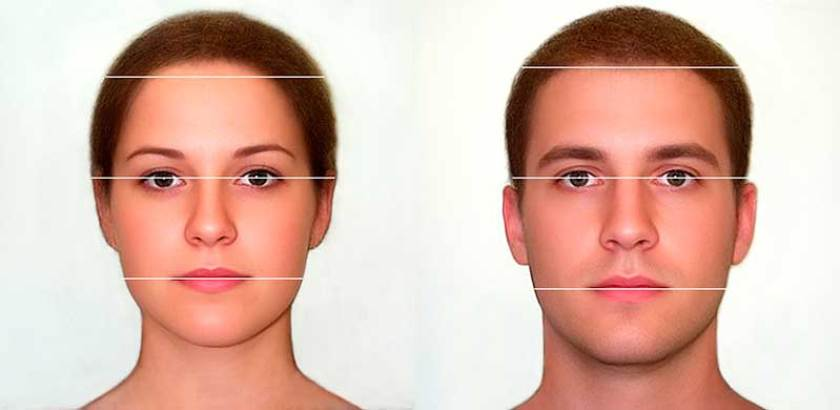 Male and female hairline prototypes and The Lipuhai Rule
